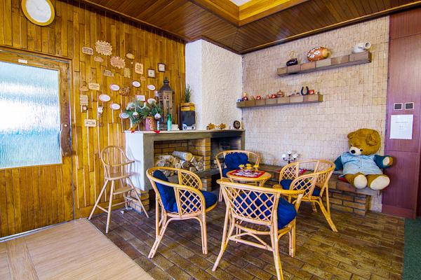 Ubytování Krkonoše - Penzion Rokytnici v Krkonoších - krb