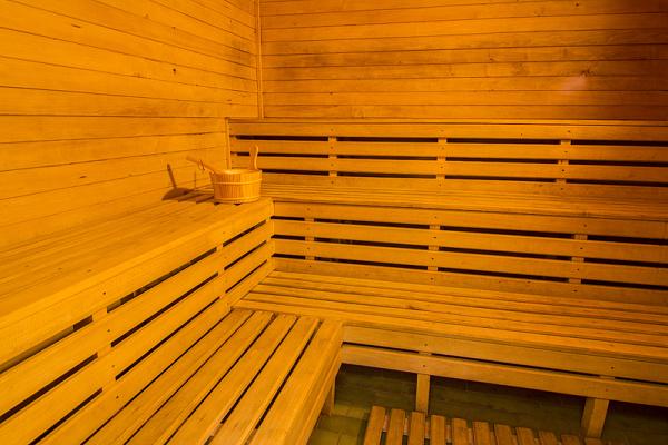Ubytování Krkonoše - Penzion Rokytnici v Krkonoších - sauna